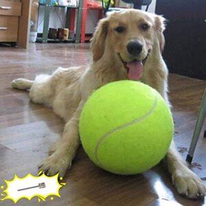 "Banfeng Giant 9.5"" Tennis Balls"